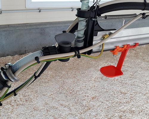 Circuit d'eau avec purge en élevage de canards