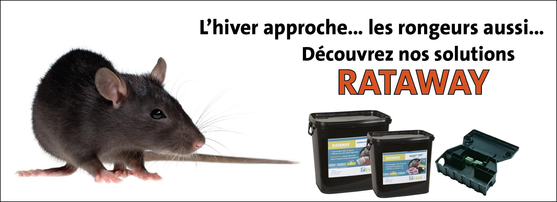 Rataway : la gamme de produits THESEO pour le contrôle des rongeurs